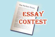 A Bridge for Kids 2013 Essay Contest