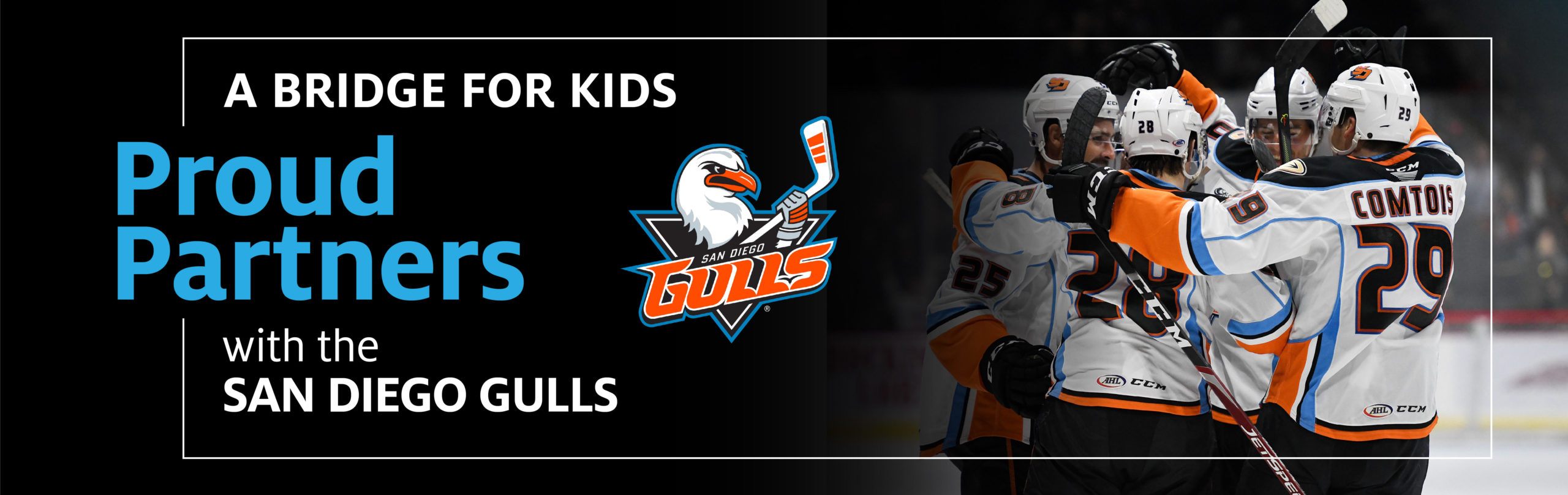 A picture of the San Diego Gulls